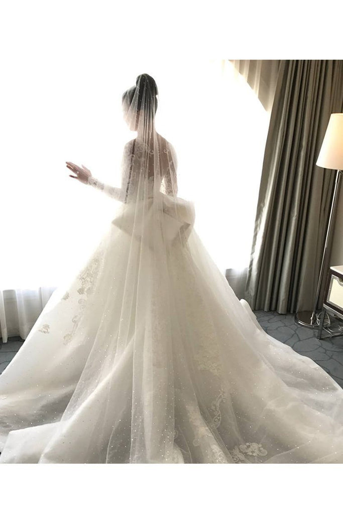 2020 Mermaid Long Sleeves Tulle Wedding Dresses With Applique Court Train