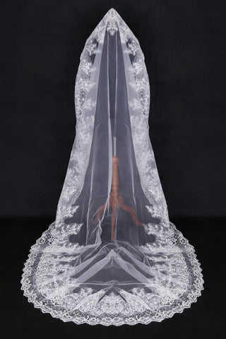 Elegant One-Tier Cathedral Length Bridal Veils With Applique