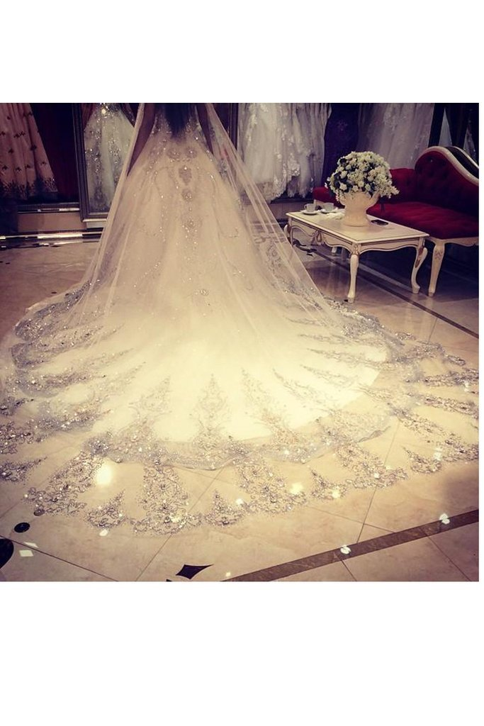 Gorgeous One-Tier Cathedral Bridal Veils With Applique&Rhinestones JS0017