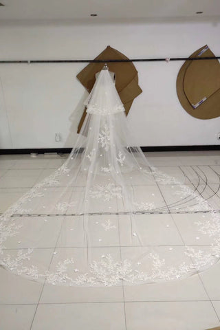 3M Long Embroidered Lace Appliques Tulle Cathedral Veil for Wedding, Wedding Veils SME14988