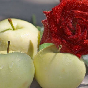 Crisp Apple Rose