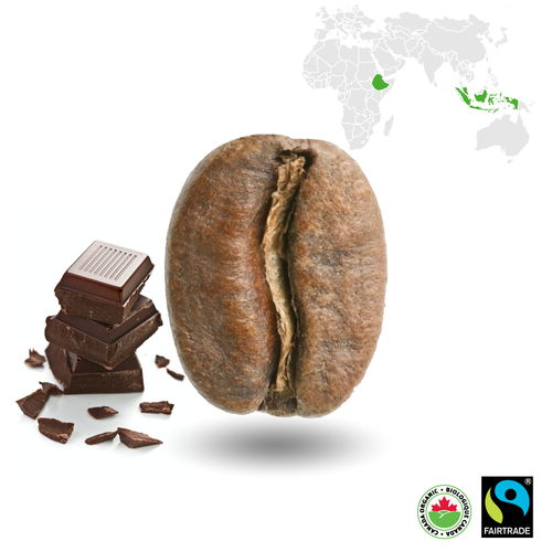 Mocha Java Light Certified Fairtrade Organic