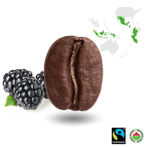 Mountain Blend Certified Fairtrade Organic