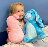 Eleanor the blue stuffed bunny rabbit and her new best friend!