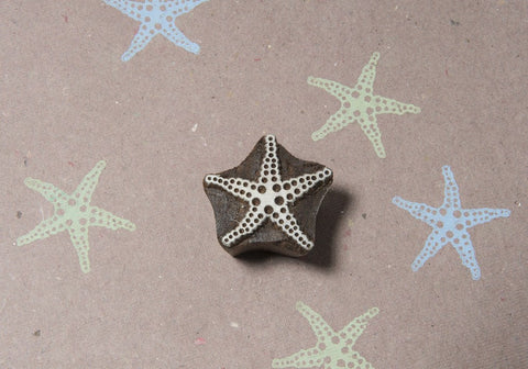 Dotted Starfish