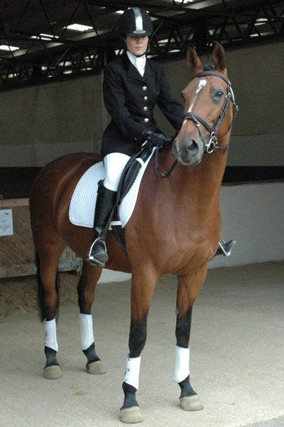 Shop Equestrian Clothing Online Best Service Amp Free Uk
