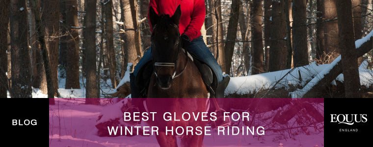 Best gloves for winter horse riding