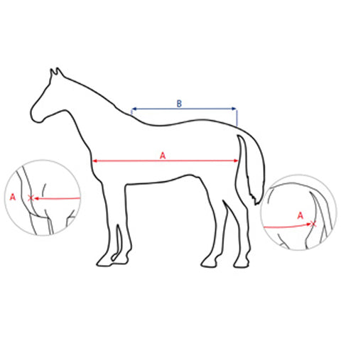 Busse Horse Rugs Measuring Guide