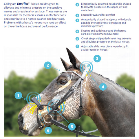 Collegiate ComFiTec Bridles Technical Info