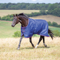 Shires Tempest Original Lightweight 100g Turnout Rug