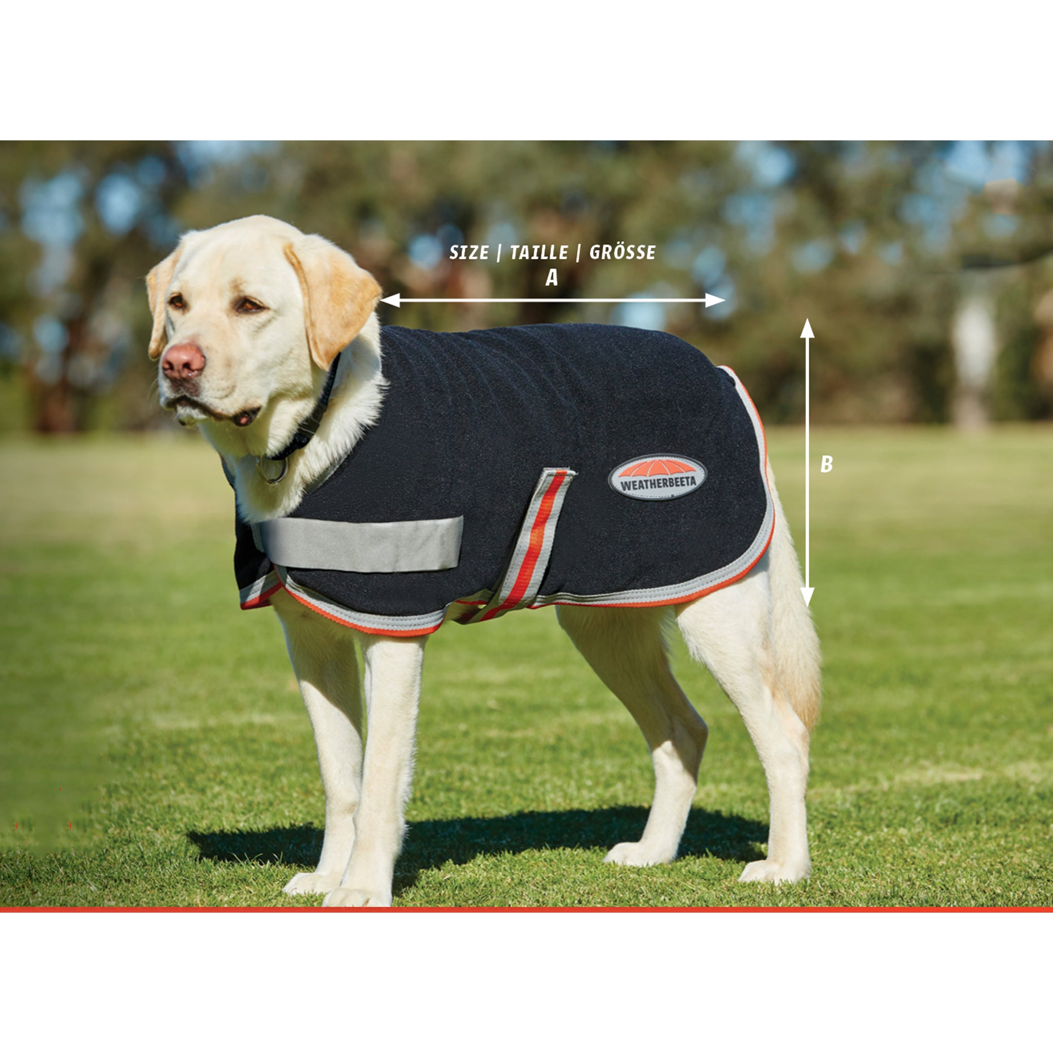 Weatherbeeta ComFiTec Therapy-Tec 1200D Dog Coat