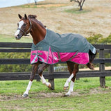 Weatherbeeta ComFiTec Plus Dynamic Lite Standard Neck Turnout Rug