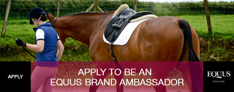 apply now to be an equestrian brand ambassador