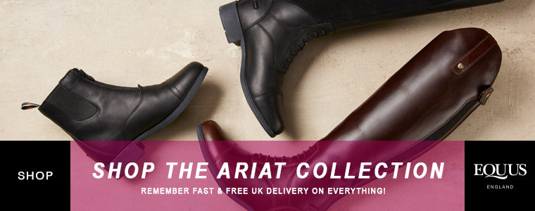 Shop Ariat equestrian collection