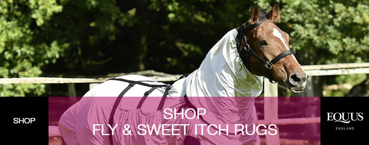 Shop Fly and Sweet Itch Rugs at EQUUS