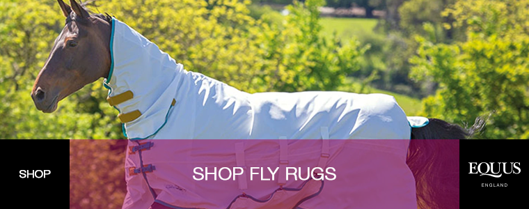 Shop Fly Rugs
