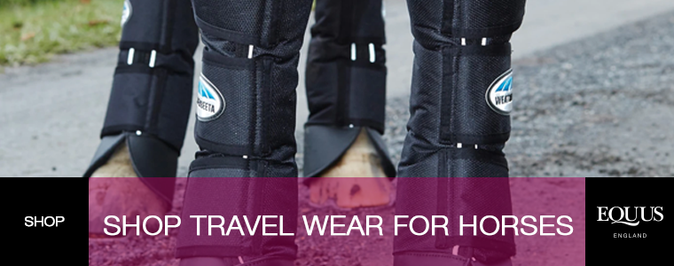 Shop Travel Wear For Horses