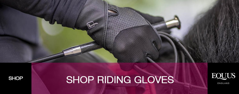Shop Riding Gloves