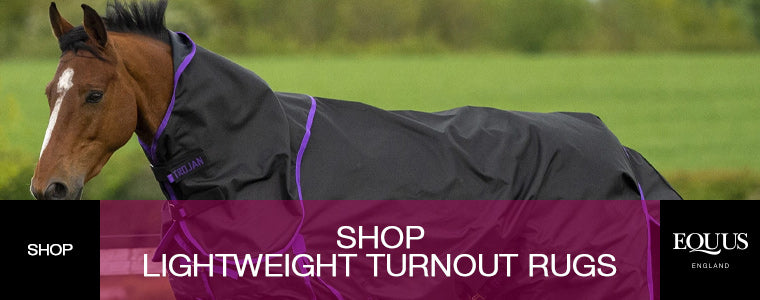 Lightweight Turnout Rugs - Shop now!