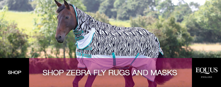 Shop Zebra Fly Masks and Rugs