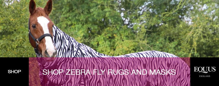Shop Zebra Fly Rugs and Masks