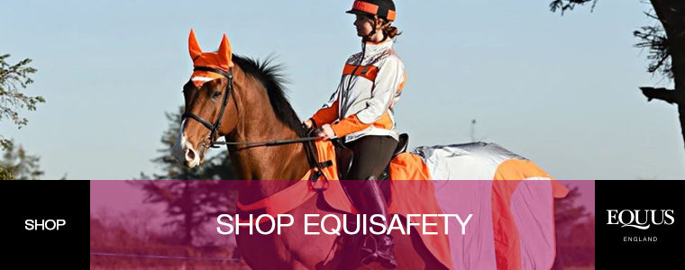 Shop Equisafety
