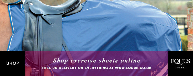 Buy exercise sheets online