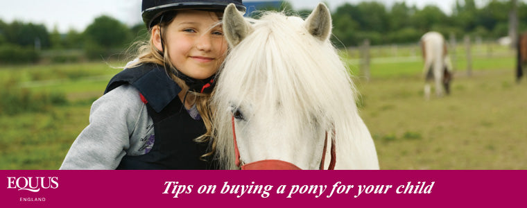 buying a pony for your child