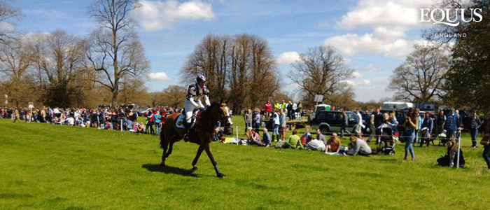 Welcome to the EQUUS Eventing Extravaganza!