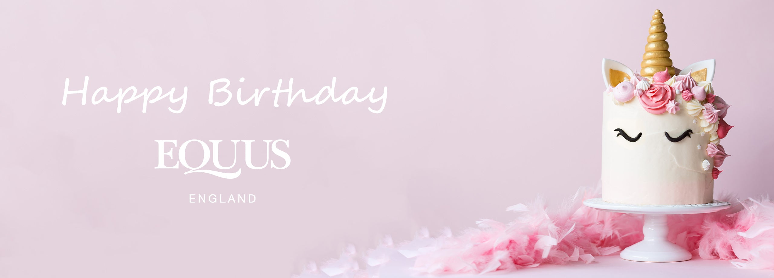 happy birthday equus