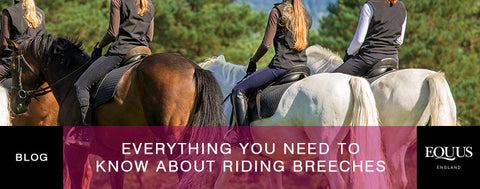 Everything you need to know about breeches