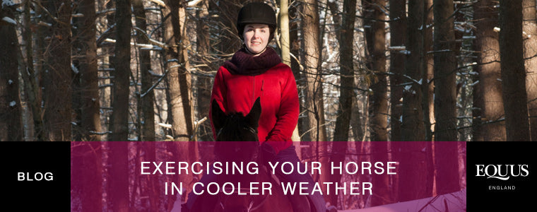 Exercising your horse in cooler weather