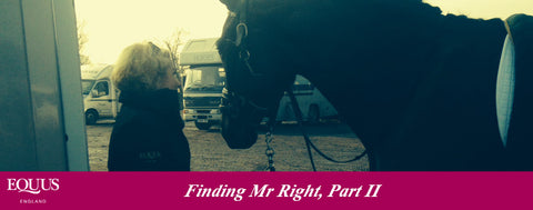 Finding Mr Right, Part II