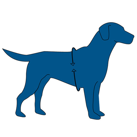 Halti Front Control Dog Harness Size Guide Image