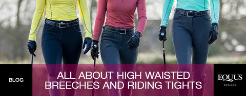 All about high waisted breeches and riding tights
