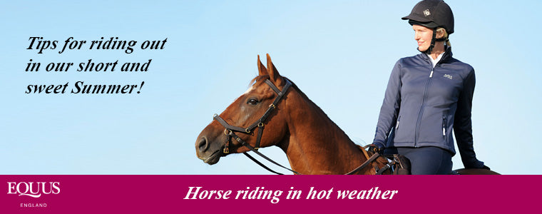 horse riding in hot weather tips