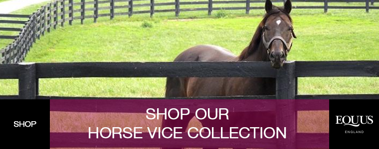 Shop Our Horse Vice Collection
