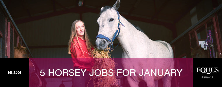 horsey jobs for january
