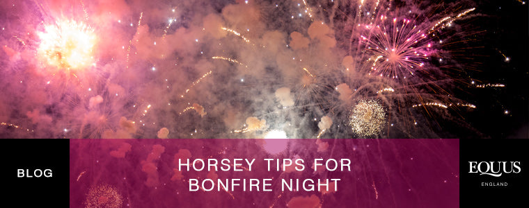 Tips on looking after your horse on bonfire night
