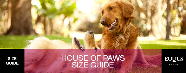 House Of Paws Size Guide
