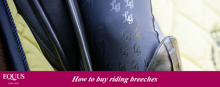 how to buy riding breeches