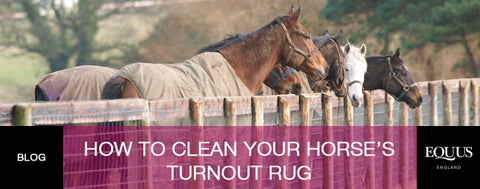 How to clean your horse's turnout rug