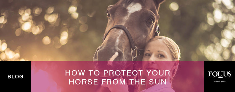 How to protect your horse from the Sun