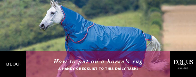 How to put on a horse's rug
