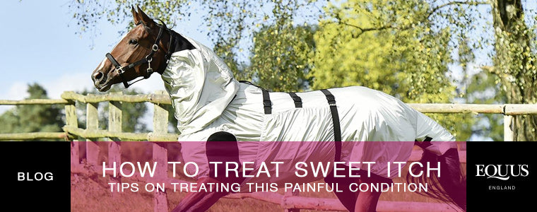 How To Treat Sweet Itch