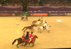 hoys 2014 double harness scurry underway
