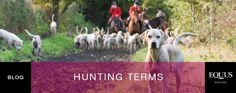 Hunting Terms