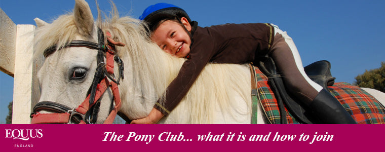 Joining The Pony Club