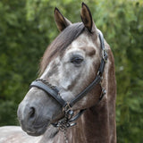 LeMieux Leather Control Headcollar