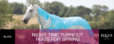 Night time turnout rugs for spring